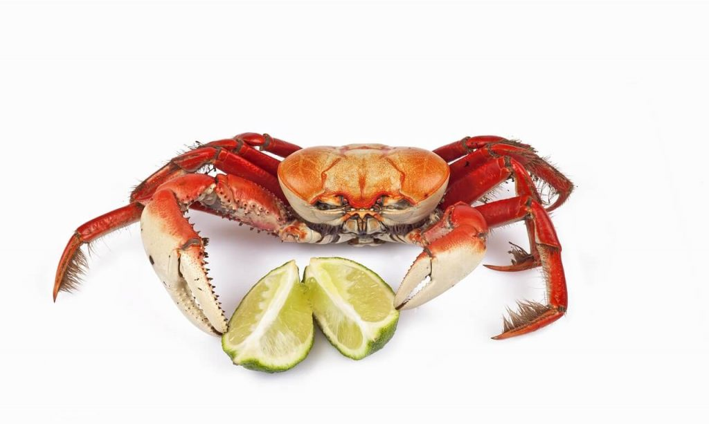Can pregnant women eat crab